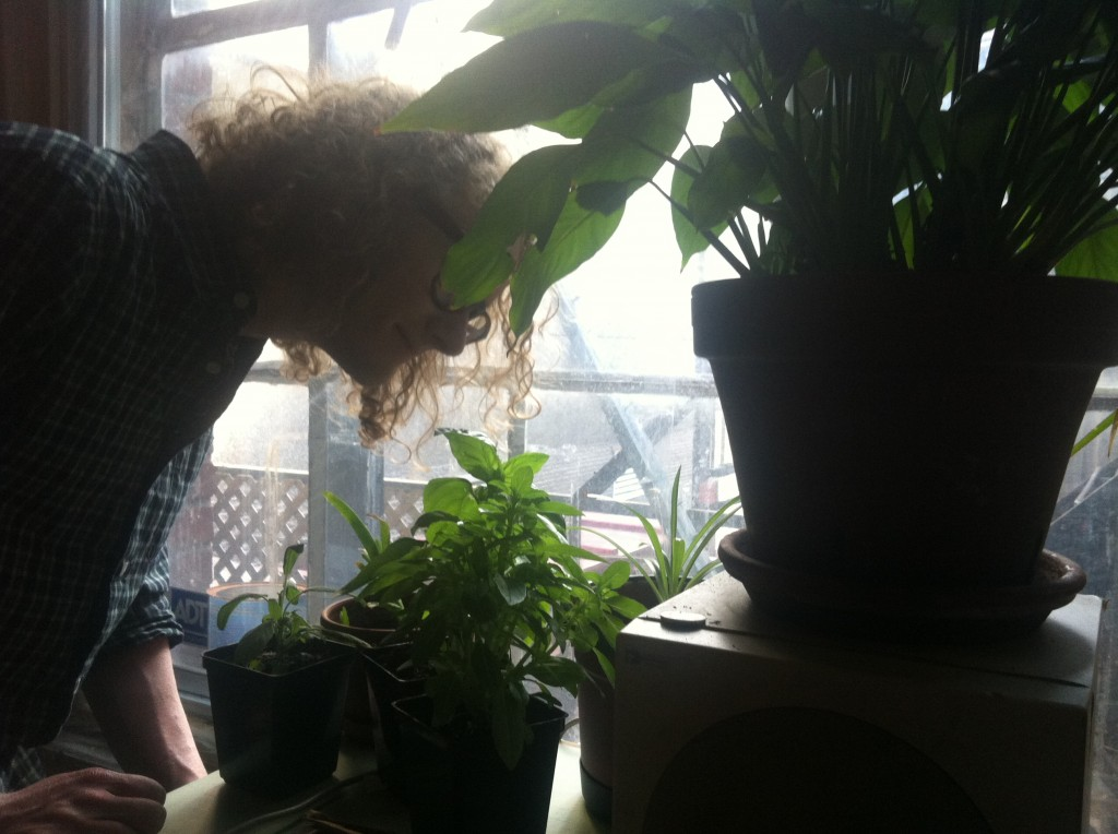 dorian and his houseplants
