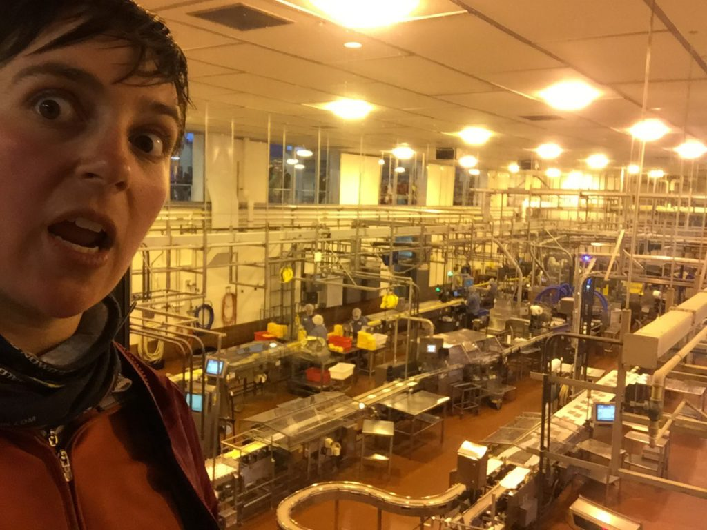 we went to the Tillamook cheese factory. mind. blown.